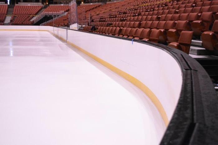 Photo: Anaheim Ducks Twitter
