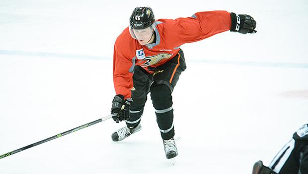 Photo: Anaheim Ducks